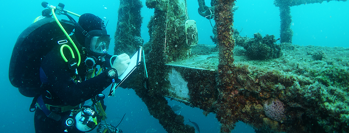 Structural-integrity-assessment-on-HMAS-Hobart