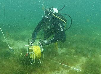 Scientific Diver with measuring equipment