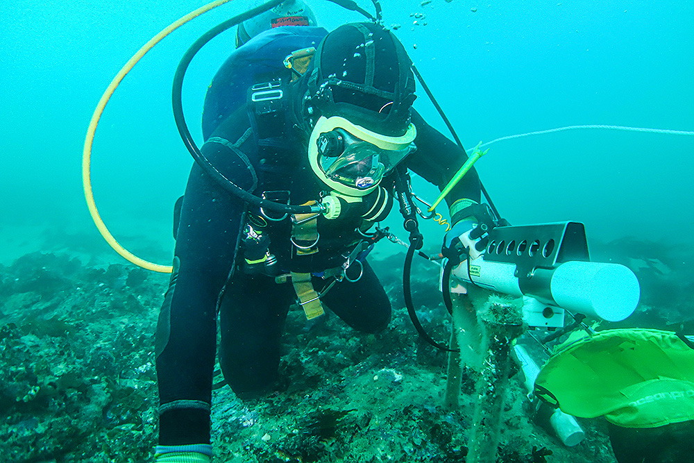Professional Marine Science Services Diver
