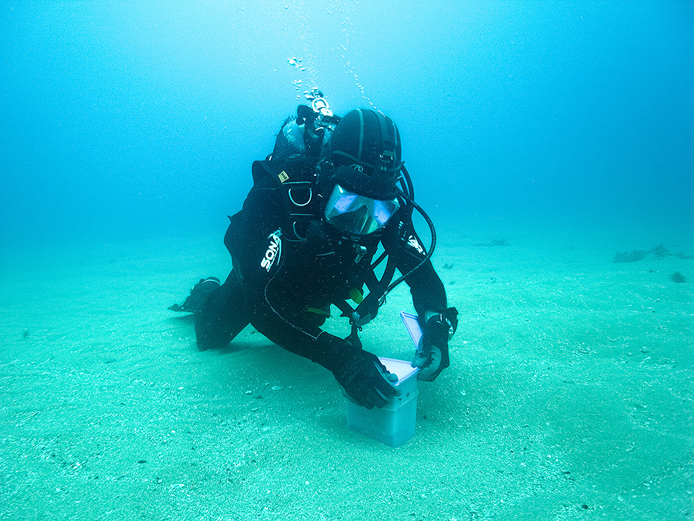 Scientific Diver collecting sand samples