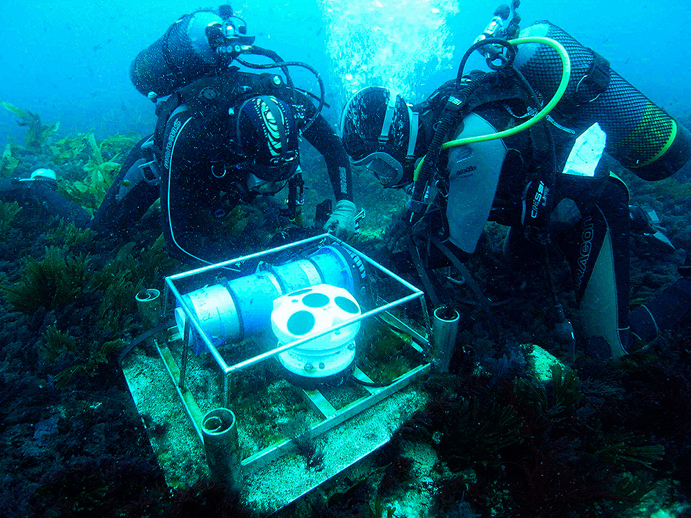 Two scientific divers with loggers