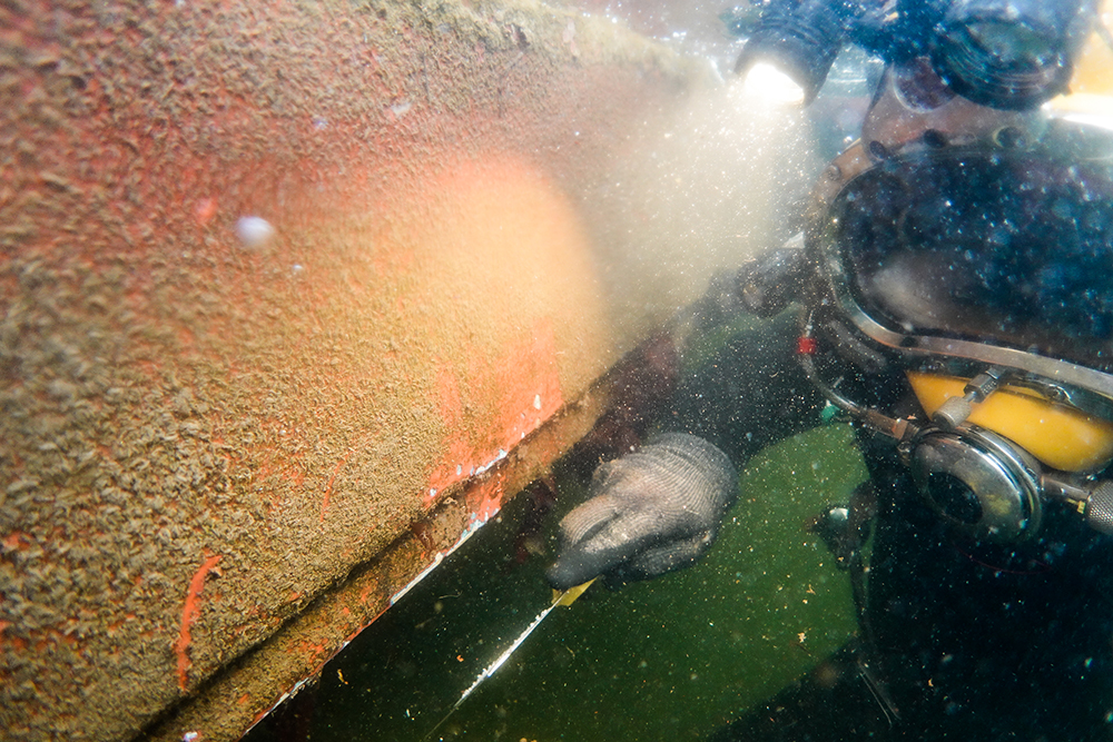 Scientific diver undertaking Biofouling Survey