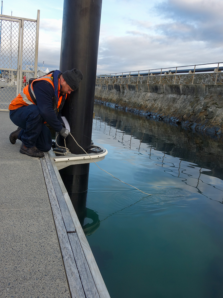 Marine scientist at work